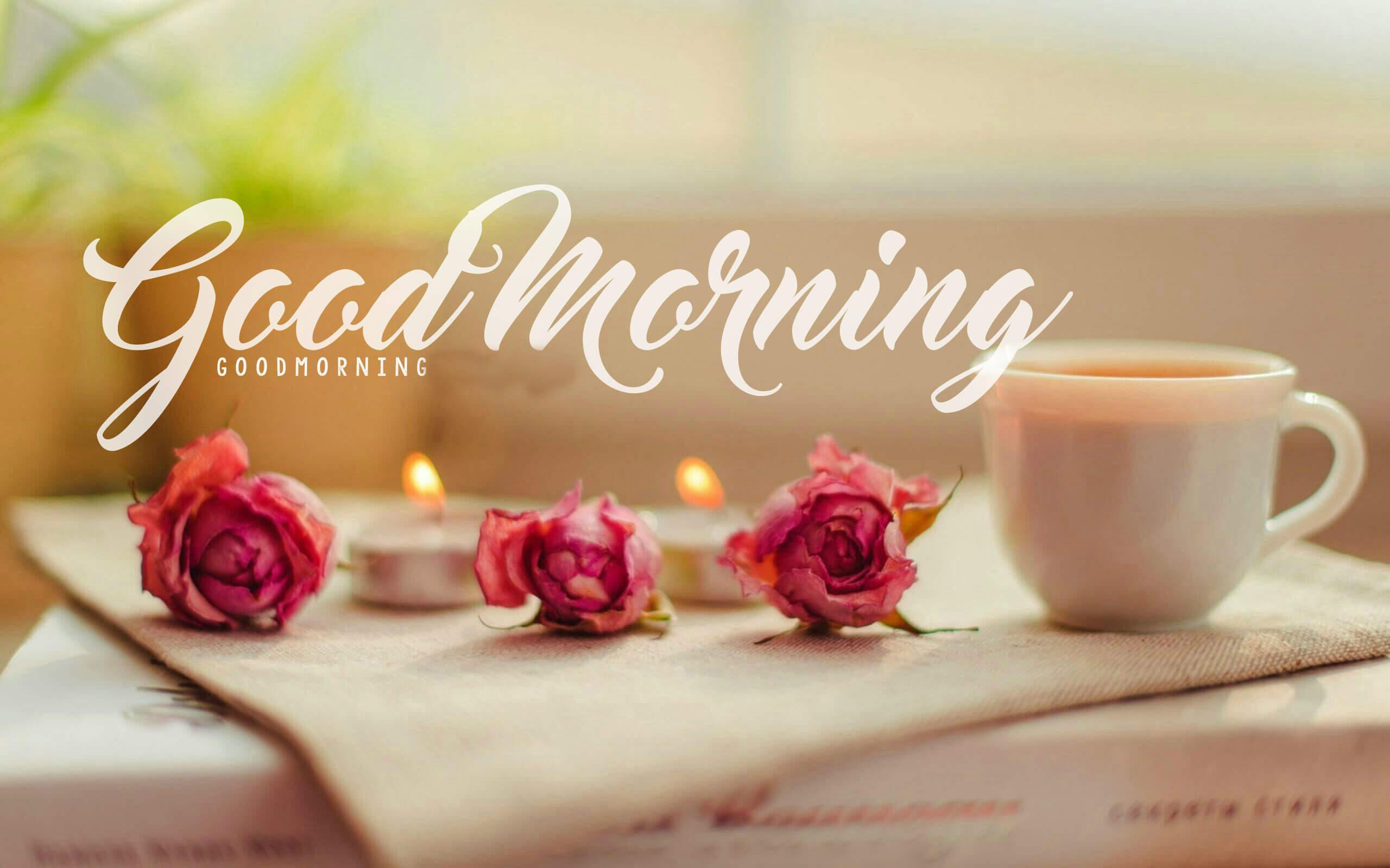 Lovely Good Morning Images Hd 1080p Download Good Morning