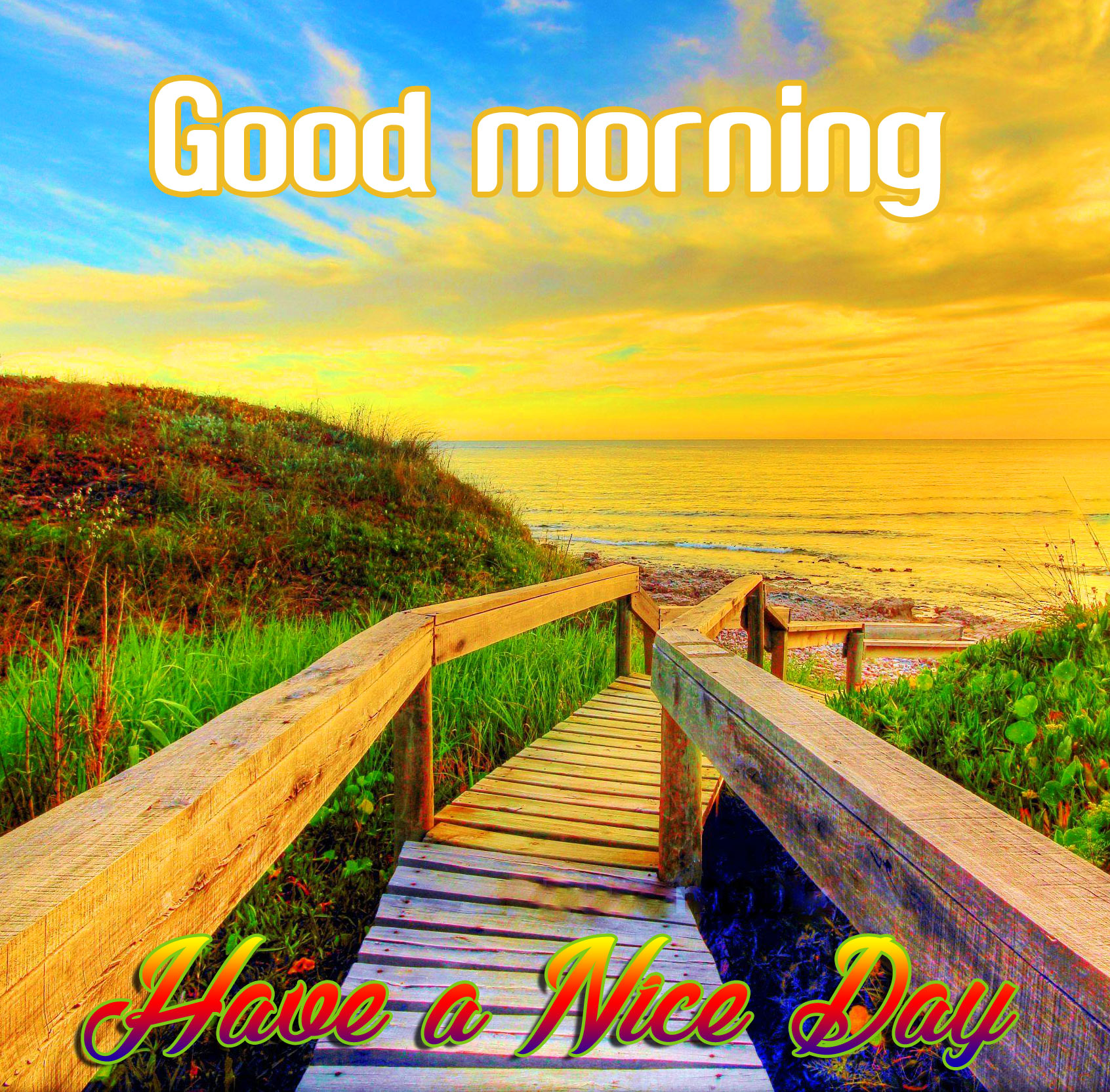 Beautiful Good Morning Scenery Images Photos Hd Download Good Morning