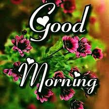 Best 50 Good Morning Cool Photos Download Good Morning
