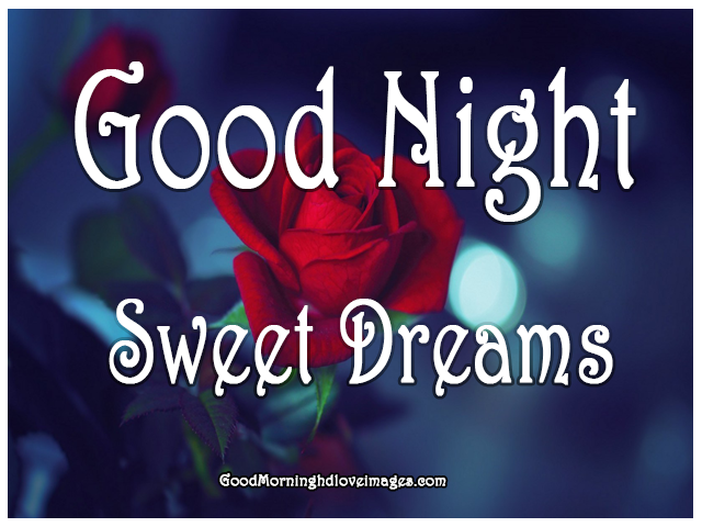 Best Good Night Photo Download Hd 2020 With Shayari Good Morning